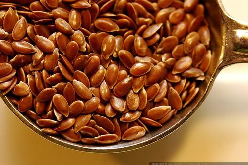 Linum usitatissimum, Flax Seed