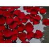 Rosa gallica, Rose Petals